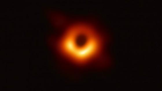Darwin y los agujeros negros, mano a mano con Gonzalo Tancredi — Columna de Darwin — No Toquen Nada | El Espectador 810