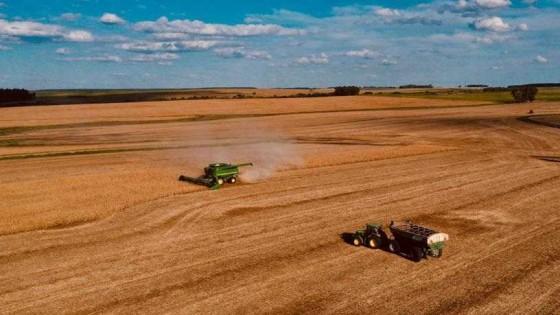 Se esperan rindes para la soja en el entorno de los 3.000 kg por hectárea — Agricultura — Dinámica Rural | El Espectador 810