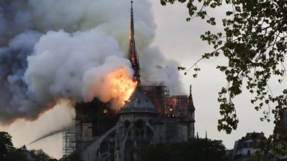 El incendio de Notre Dame y sus responsables, según Darwin — Columna de Darwin — No Toquen Nada | El Espectador 810