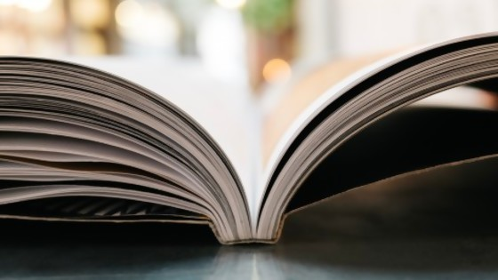 La gente se pregunta cuándo se edita el libro de Alberto — El mostrador — Bien Igual | El Espectador 810