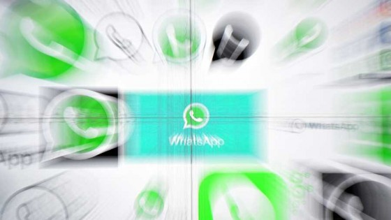 El Whatsapp en entredicho — L'Almacén de los males necesarios — Otro Elefante | El Espectador 810