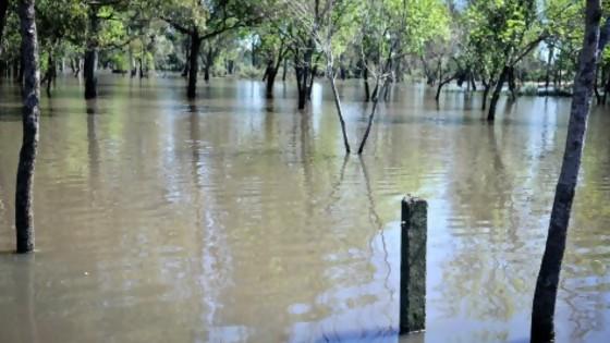 SINAE: actualización de la situación de personas afectadas tras las lluvias del fin de semana — Puesta a punto — Más Temprano Que Tarde | El Espectador 810