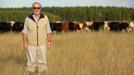 La forestación se ha transformado en un gran aliado productivo y económico en las empresas ganaderas — Economía — Dinámica Rural | El Espectador 810