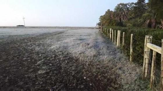 Vuelven las bajas temperaturas y las heladas se extenderían hasta octubre — Agricultura — Dinámica Rural | El Espectador 810