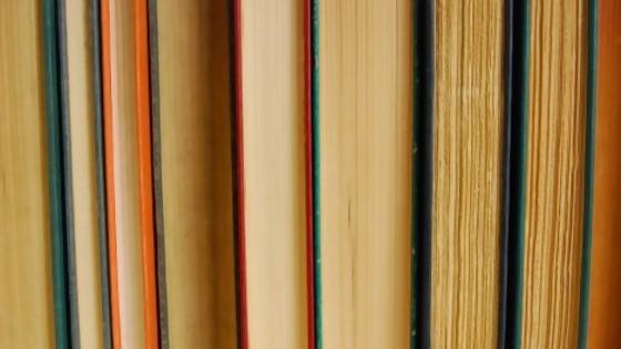 Los libros que vos robáis — Ines Bortagaray — No Toquen Nada | El Espectador 810