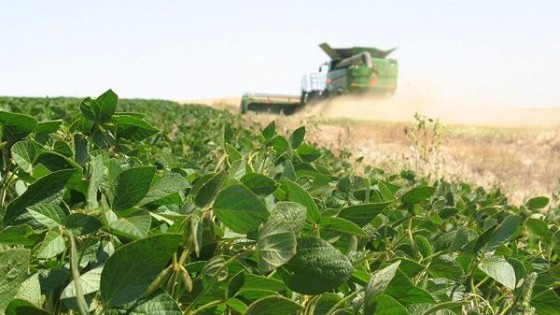 ''Con los actuales stocks es esperable que la soja siga al alza'' — Agricultura — Dinámica Rural | El Espectador 810