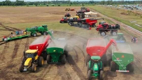 Olivera y Maulela remataron más de 200 lotes — Inversión — Dinámica Rural | El Espectador 810