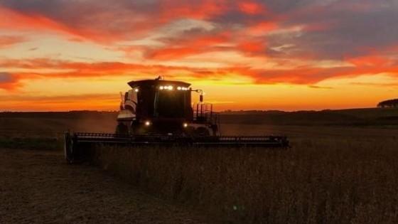 F. Villamil: ''Por el déficit hídrico, el agricultor local no pudo captar los buenos precios de la soja'' — Economía — Dinámica Rural | El Espectador 810