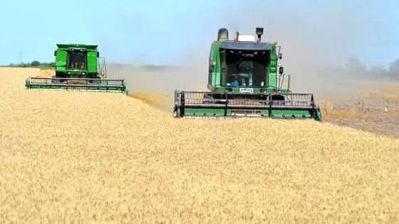 D. Dufour: ''Lo más rentable es el doble cultivo'' — Agricultura — Dinámica Rural | El Espectador 810