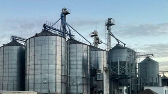 M. Dalessandro: ''Hay que invertir en suplementación, y así producir más leche y más carne'' — Ganadería — Dinámica Rural | El Espectador 810