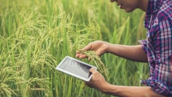 F. Morixe: ''Más allá de la firmeza de los precios, el negocio agrícola está signado por la volatilidad'' — Agricultura — Dinámica Rural | El Espectador 810