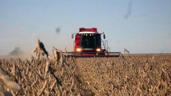 Volátil: la soja sube 10 dólares un día y al otro baja hasta 20 dólares — Economía — Dinámica Rural | El Espectador 810