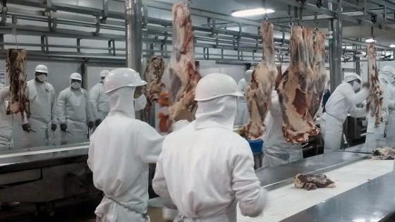 Para FOICA es imprescindible la rehabilitación de BPU para exportar a China — Comercio Exterior — Dinámica Rural | El Espectador 810