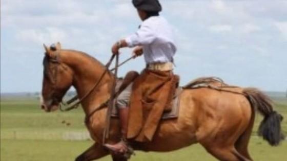 Esc. W. Abelenda remata Criollos de ''La Caraguatá'' y ''La Magdalena'' — Mercados — Dinámica Rural   El Espectador 810