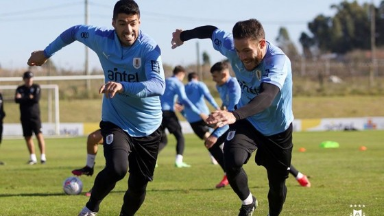 Suárez y el desafío de su última Copa América con Uruguay — Deportes — Primera Mañana   El Espectador 810