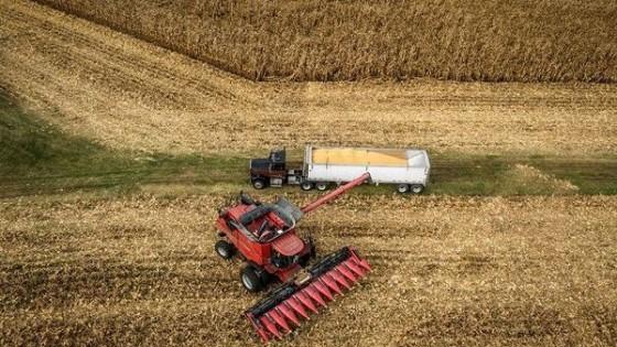 ¿Qué pasa con la soja? — Comercio Exterior — Dinámica Rural | El Espectador 810