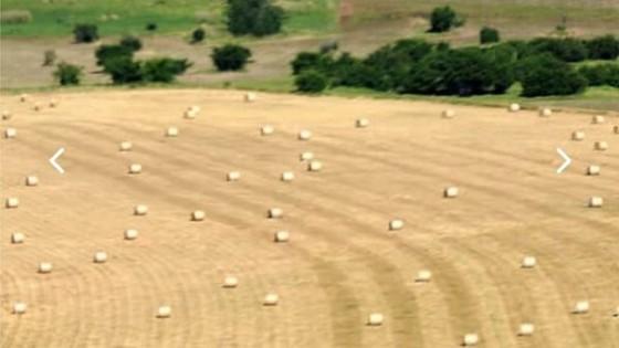 A. Sciarra: ''En Campo Abierto buscamos dar respuesta al productor en todas las áreas'' — Mercados — Dinámica Rural   El Espectador 810