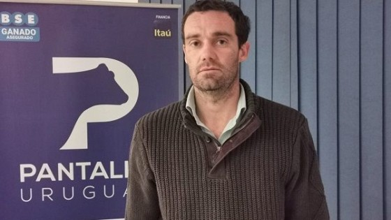 G. Araújo: El novillo se consolida en los 4.20 dól/kgs — Mercados — Dinámica Rural   El Espectador 810