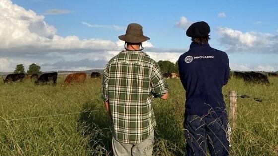 J.I.Montans: El desempeño de las empresas ganaderas ''es de bueno a muy bueno'' — Extensión — Dinámica Rural | El Espectador 810