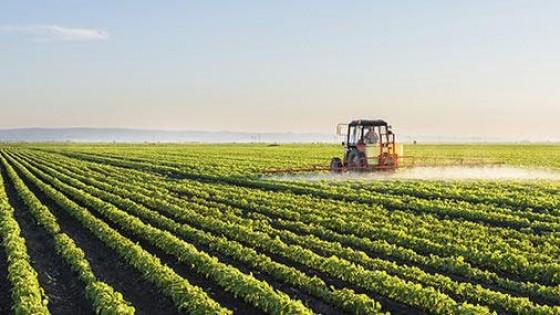 Para la Agropecuaria de Dolores ''se da un gran paso en  seguros agrícolas'' — Agricultura — Dinámica Rural | El Espectador 810