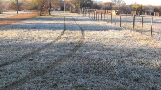 ''Frente frío, heladas negras, y temperaturas bajas hasta setiembre inclusive'' — Clima — Dinámica Rural | El Espectador 810