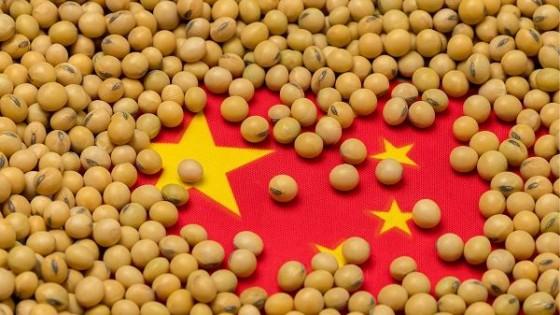 La ausencia de China impacta en el mercado, y se refleja en las referencias — Comercio Exterior — Dinámica Rural | El Espectador 810
