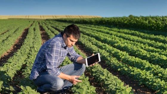 ''El negocio necesita certezas y allí están los seguros y opciones'' — Inversión — Dinámica Rural | El Espectador 810