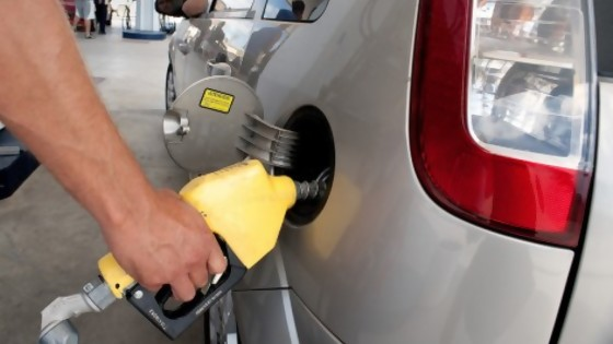 Darwin arma el GACH del precio del combustible, ¡con nombres! — Columna de Darwin — No Toquen Nada | El Espectador 810