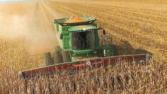 CUSA aumentó un 5.39% las referencias para las labores agrícolas — Agricultura — Dinámica Rural | El Espectador 810