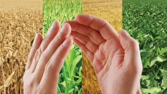 L. Camaño: ''Bravo es un herbicida pre emergente de última tecnología'' — Agricultura — Dinámica Rural | El Espectador 810