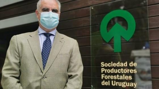 N. Ledesma: ''La actividad forestal es complementaria'' — Inversión — Dinámica Rural | El Espectador 810