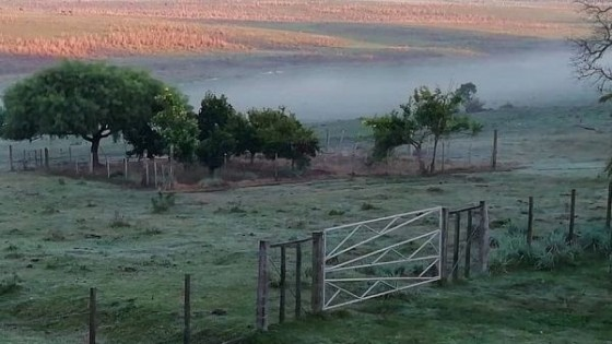Primavera: Frente frío genera heladas agrometeorológicas — Clima — Dinámica Rural   El Espectador 810