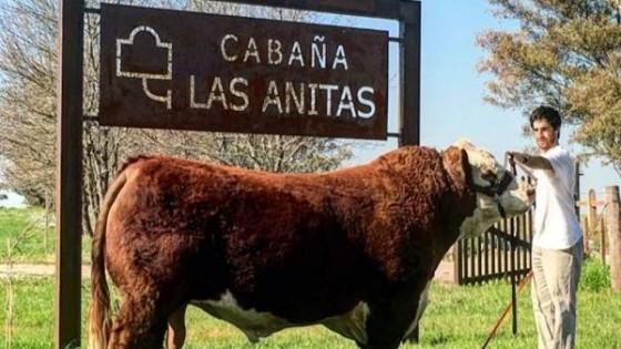 '' 'Las Anitas', con genética elite'' — Zafra — Dinámica Rural | El Espectador 810