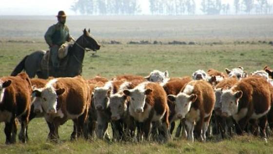 Agronegocios: ''Precios muy buenos e históricos que animan'' — Mercados — Dinámica Rural   El Espectador 810