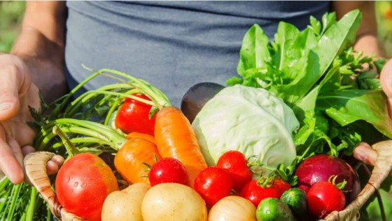 El valor kilo canasta en setiembre aumentó un 5.7% — Granja — Dinámica Rural | El Espectador 810