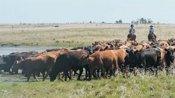 M. Bidegain: Desde noviembre ''lloverá por debajo de lo normal'' — Clima — Dinámica Rural | El Espectador 810