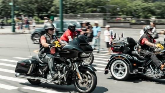 Se viene el segundo encuentro de Motorrinos — Sergio Pena — Otro Elefante | El Espectador 810