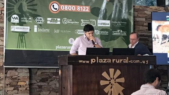 Plazarural 'mueve el mercado con más de 20 mil vacunos' — Ganadería — Dinámica Rural | El Espectador 810