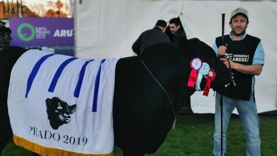 El Yunque' logró el Gran Campeón en Expo Prado 2019 — Ganadería — Dinámica Rural | El Espectador 810