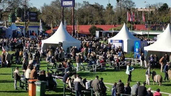 'Nos renovamos y la 114a  Exposición fue excelente', según la jefa de Exposiciones Andrea Galeano — Economía — Dinámica Rural | El Espectador 810