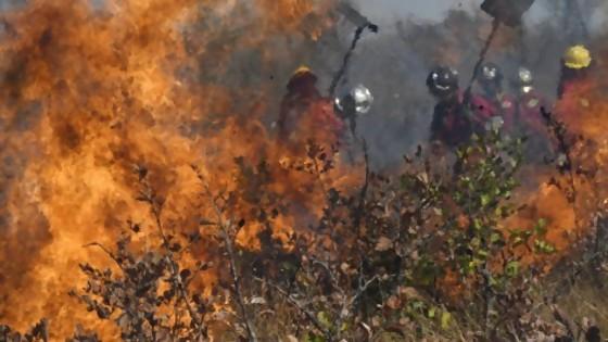 Incendios en Paraguay: áreas protegidas amenazadas — Puesta a punto — Más Temprano Que Tarde | El Espectador 810