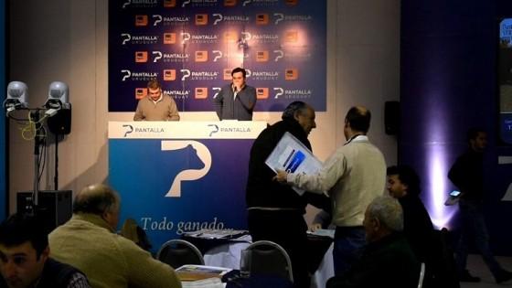 Pantalla Uruguay marcó un promedio de 2.55 para los terneros, con 100% de colocación — Ganadería — Dinámica Rural | El Espectador 810