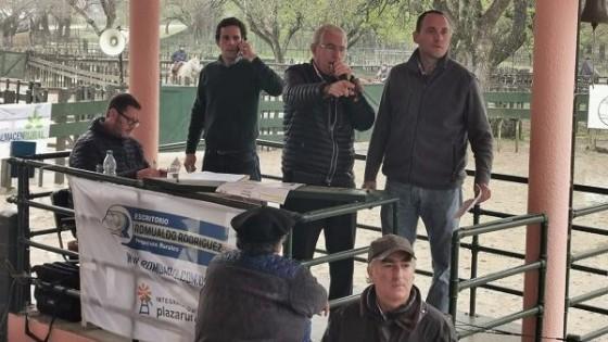 Los actuales precios de las haciendas explican el alto nivel de colocación de toros y vientres — Ganadería — Dinámica Rural | El Espectador 810