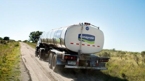 Conaprole aumentó 4% el precio de la leche al productor — Lechería — Dinámica Rural | El Espectador 810