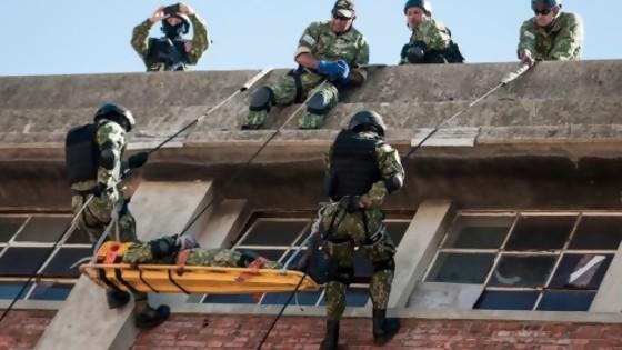 Las exigencias para entrar como militar y la propuesta de exportación de planchas — Columna de Darwin — No Toquen Nada | El Espectador 810