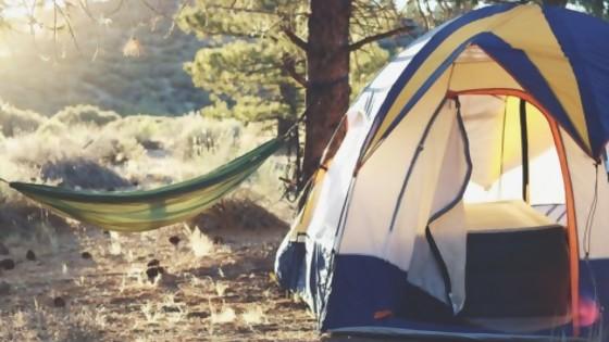 Camping Si, Camping No — Audios — Otro Elefante | El Espectador 810