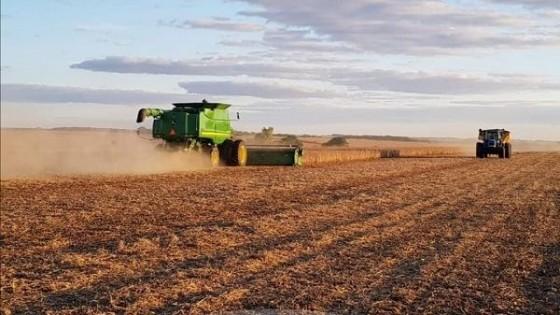 Granosur: Asesoramiento y servicios, buscando la eficiencia en el agronegocio — Agricultura — Dinámica Rural | El Espectador 810