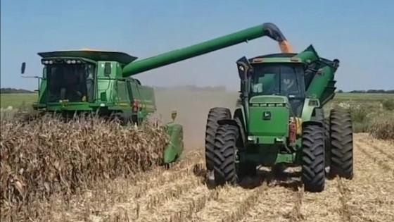 Con rindes dispares, pero por debajo con respecto a la zafra pasada, CUSA prevé buena demanda por los servicios — Agricultura — Dinámica Rural | El Espectador 810