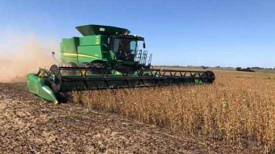 I. Foderé: 'Esperamos una cosecha de soja con rindes de entre 2.500 y 2.600 kgs/há' — Agricultura — Dinámica Rural | El Espectador 810