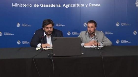 Emergencia Agropecuaria: El MGAP aprobó, hasta el momento, 377 solicitudes de créditos — Economía — Dinámica Rural | El Espectador 810